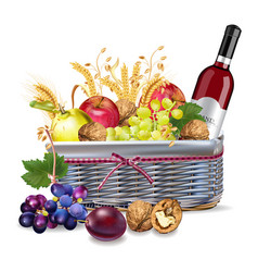 basket with wine bottle and fruits vector image