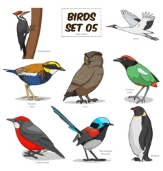 Bird set cartoon colorful vector image