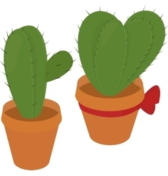 cactus in brown pot desert green flora prickly vector image