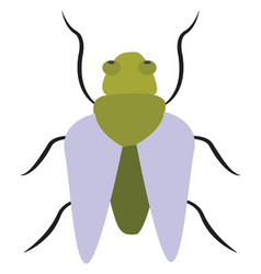 Clipart a light green bug or color vector