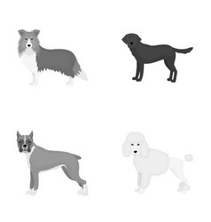 Dog laika beagle and other web icon in vector