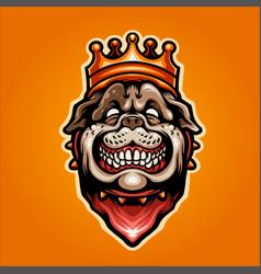 head a bulldog in crown vector image