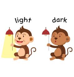 Opposite words light and dark vector