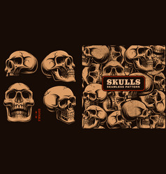 Set of different skulls with seamless pattern vector