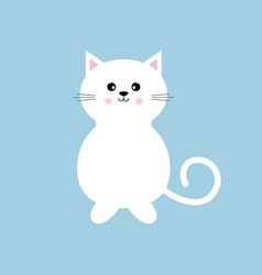 white kitty isolated blue background vector image