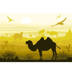 nature wild animals camel goat ostrich alpaca vector image vector image
