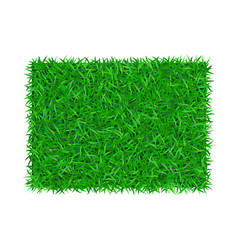 Green grass background 3d lawn greenery nature vector