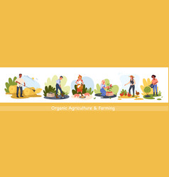 organic agriculture countryside works and farming vector image