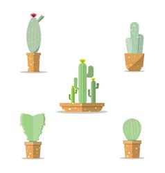 Set cactus in pot in flat design vector