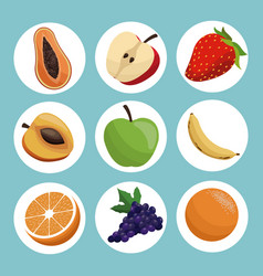 set healthy fruit eating vector image