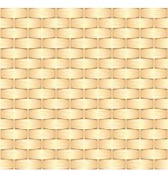 straw texture vector image
