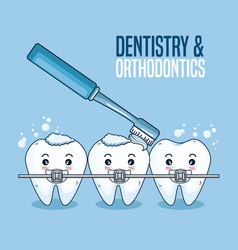Teeth care with orthodontic and toothbrush tool vector