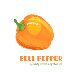 fresh bell pepper isolated on white background vector image vector image