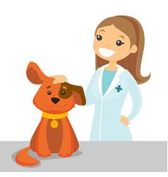 Caucasian white veterinarian examining dog vector
