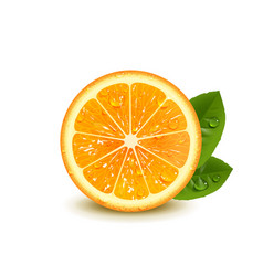 Juicy orange with green leaves vector