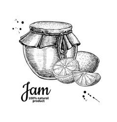 lemon jam glass jar drawing fruit jell vector image