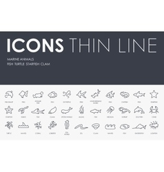 Marine Animals Thin Line Icons vector image