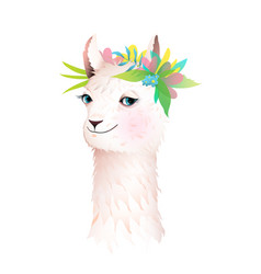 pretty romantic llama or alpaca smiling animal vector image