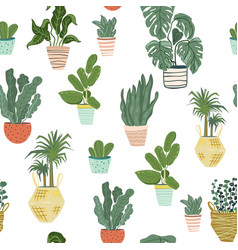 seamless pattern with house plants in vector image