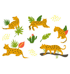 set hand drawn leopards and tropical leaves vector image