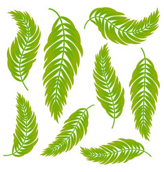 set of flat isolated abstract green leaves vector image