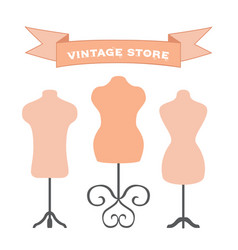 set of mannequins manikins for tailors designers vector image