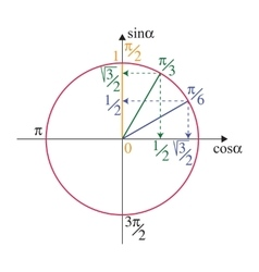 Trigonometric unit circle vector