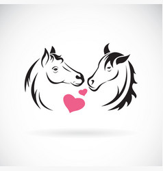 two horse and heart on white background wild vector image