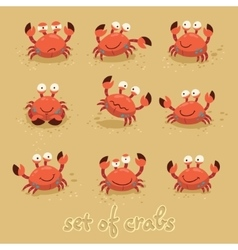 Cute crabs funny characters Summer beach vector image