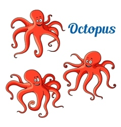 Funny and joyful cartoon red octopuses vector image