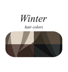 Hair colors for winter type vector