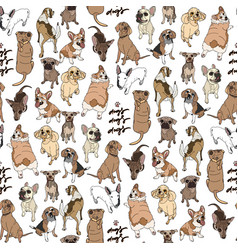 seamless pattern with different dogs breed vector image