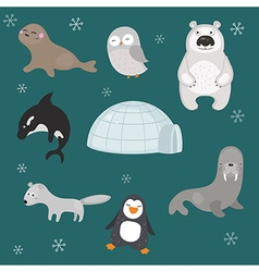 Set of different arctic animals vector