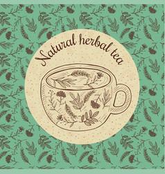 Sketch card - herbal tea vector