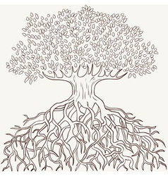 tree with root vector image