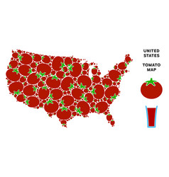 usa map collage of tomato vector image