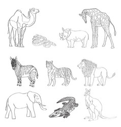 the image of animals animals vector image vector image