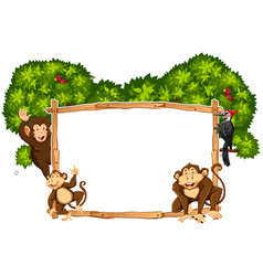 border template with monkeys and toucan vector image