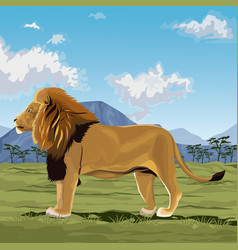 colorful scene african landscape with lion vector image