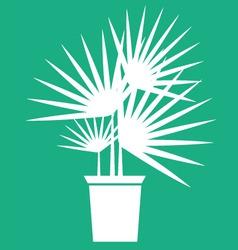 houseplant vector image vector image