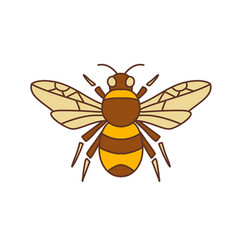 bumble bee icon vector image