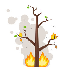 Burnt tree flame on branches clouds smoke vector