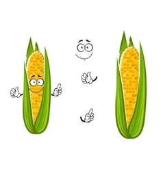 Cartoon cob of juicy sweet corn vegetable vector