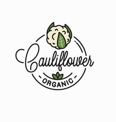 cauliflower vegetable logo round linear on white vector image