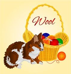 Colors cat and a basket with balls of wool vector