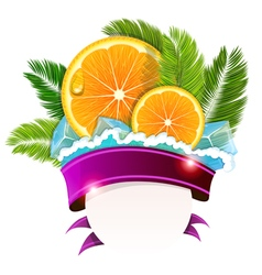 Orange slices and palm branches vector