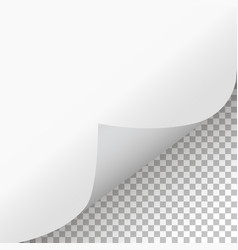 page curl with shadow on isolated background vector image