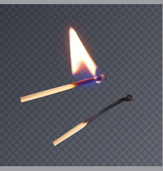 realistic matches lighted match and burned match vector image