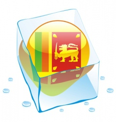 Sri Lanka flag vector image vector image