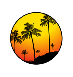 summer tropical border with palm trees silhouette vector image